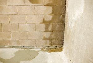 water-seepage-through-basement-wall